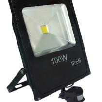 TI-GPS-FL100W